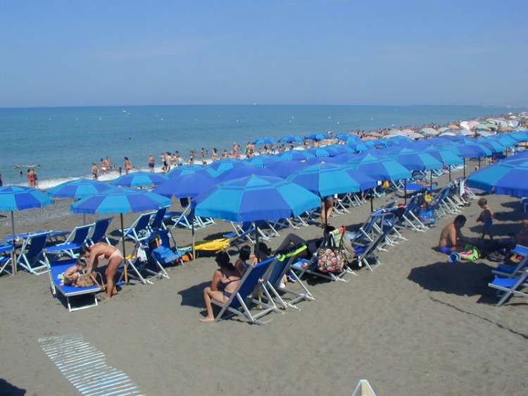 camping free beach marina di bibbona livorno view all