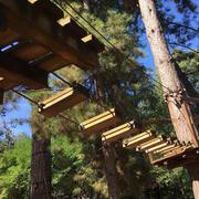 scale di corsa
