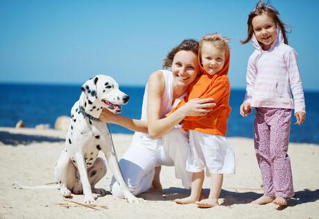 hotelmargherita it 1-it-250760-offerte-pasqua-rimini-sconto-bambini-hotel-3-stelle-per-famiglie 040