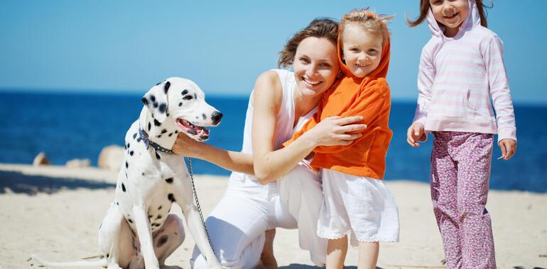 hotelmargherita en single-parents-with-children-offer-in-rimini-3-star-hotel 019