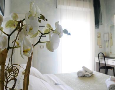 hoteldeiplatani it promozione-vacanze-meta-settembre-a-rimini-con-pensione-completa-e-bimbi-gratis 027