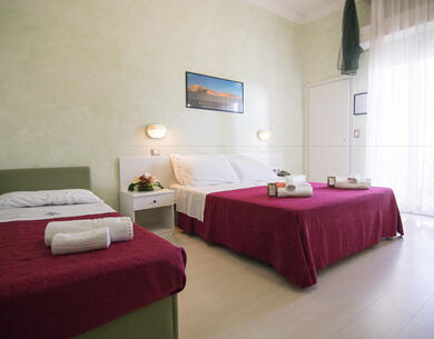 hoteldeiplatani en voucher-for-holidays-by-the-sea-in-rimini 028
