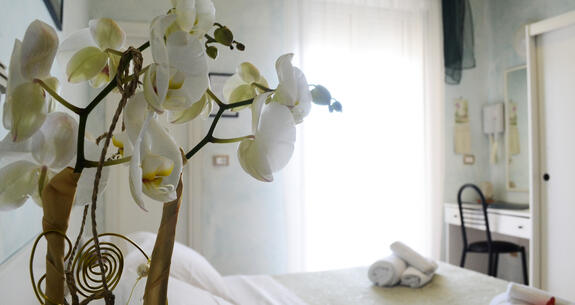 hoteldeiplatani it promozione-vacanze-meta-settembre-a-rimini-con-pensione-completa-e-bimbi-gratis 022