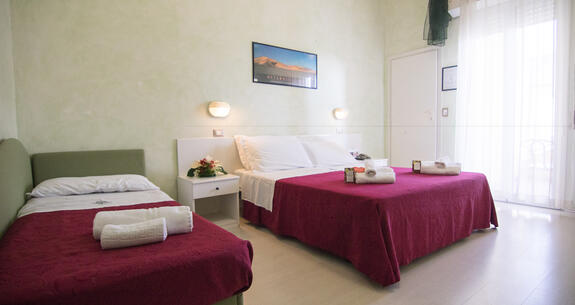 hoteldeiplatani en voucher-for-holidays-by-the-sea-in-rimini 023
