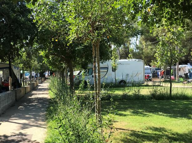baiadigallipoli it offerta-piazzole-con-servizio-spiaggia-gratuito-in-camping-resort-nel-salento 008