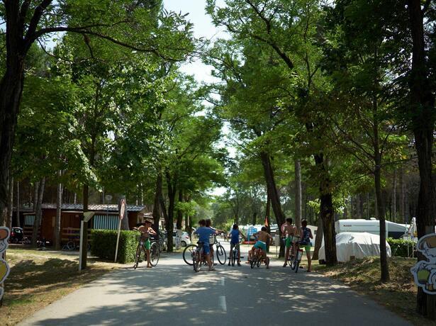 campinglido de sonderangebot-fur-september-stellplatze-im-campingdorf 025