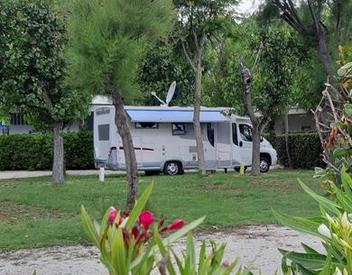 villaggiolemimose it offerta-over-60-in-campeggio-sul-mare-nelle-marche 017