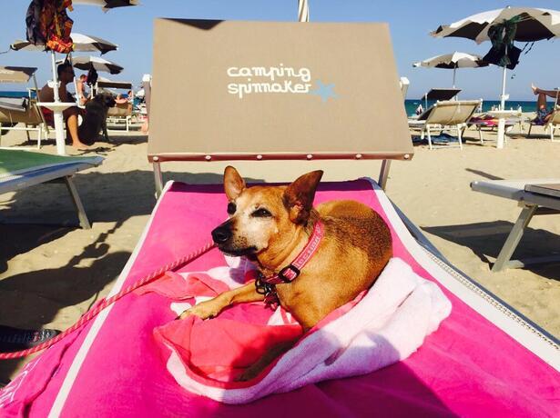 vacanzespinnaker it offerte-campeggio-sul-mare-delle-marche 008