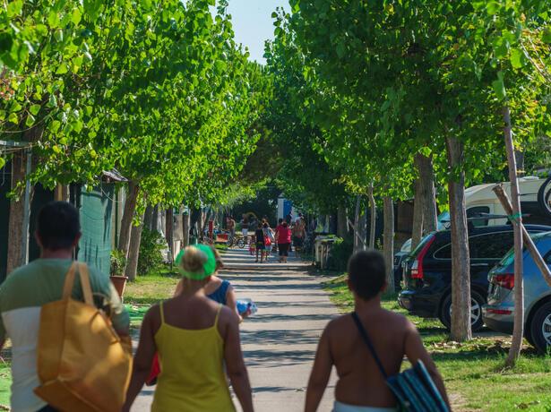 vacanzespinnaker it pacchetto-no-stress-in-camping-con-accesso-diretto-al-mare-nelle-marche 006