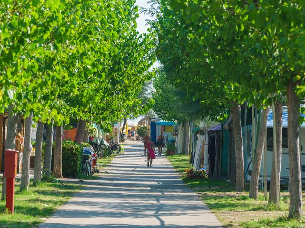 vacanzespinnaker it vacanze-in-sicurezza-in-villaggio-e-camping-sul-mare-nelle-marche 007