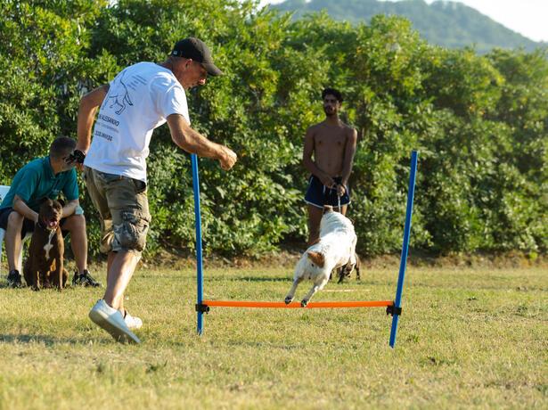 vacanzespinnaker it accettiamo-il-bonus-vacanze-in-campeggio-sul-mare-nelle-marche 010