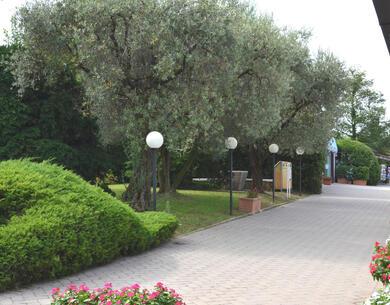 laquercia it offerta-fine-estate-campeggio-lago-di-garda 033