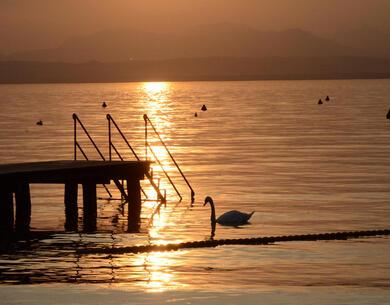 laquercia it buono-voucher-per-vacanze-in-campeggio-sul-lago-di-garda 037