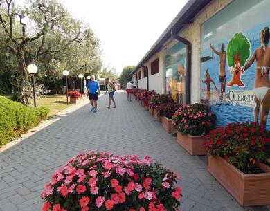 laquercia it offerta-settembre-e-ottobre-con-un-soggiorno-gratis-in-camping-sul-lago-di-garda 035
