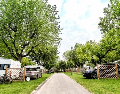 laquercia de campingplatz-lazise-gardasee-mit-privatstrand-und-services 037