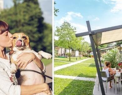laquercia de im-oktober-ferien-mit-ihrem-hund 033