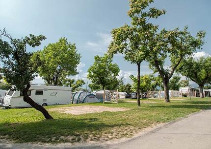 laquercia it offerta-campeggio-lago-di-garda-con-piazzole-grandi-e-servizi-per-camperisti 030