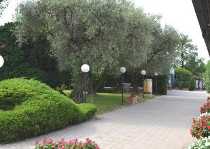 laquercia it offerta-fine-estate-campeggio-lago-di-garda 028