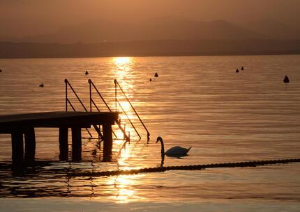 laquercia it buono-voucher-per-vacanze-in-campeggio-sul-lago-di-garda 032