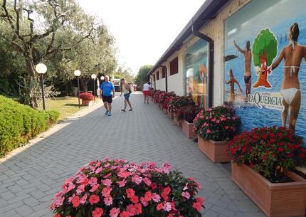 laquercia it campeggio-lago-di-garda-vacanze-infrasettimanali-spiaggia 032
