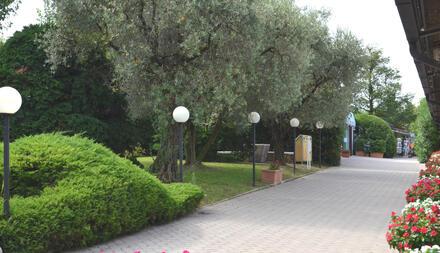 laquercia it offerte-camping-lago-di-garda 038