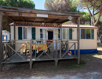 pinetasulmarecampingvillage en offer-for-september-in-cesenatico-at-campsite-in-the-pinewoods-with-children-staying-for-freen2 037