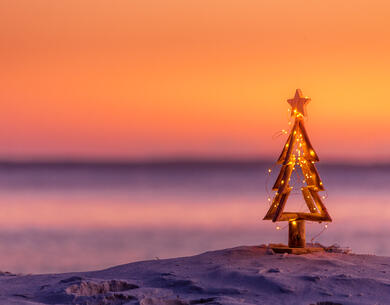 pinetasulmarecampingvillage en offer-for-the-weekend-of-immaculate-conception-in-cesenatico-on-campsite-near-the-christmas-markets 037