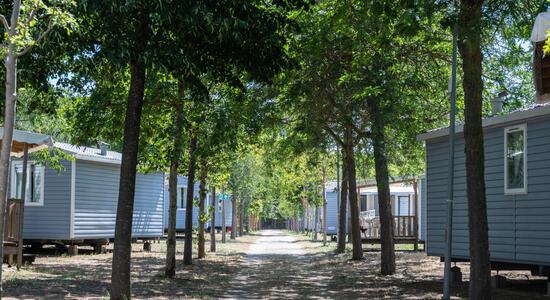 pinetasulmarecampingvillage fr offre-vacances-juin-a-cesenatico-avec-enfants-gratuitsn2 034