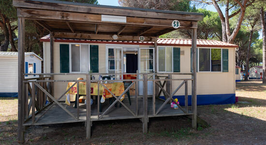 pinetasulmarecampingvillage en offer-for-september-in-cesenatico-at-campsite-in-the-pinewoods-with-children-staying-for-freen2 033