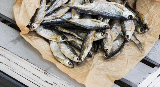 pinetasulmarecampingvillage de angebot-festival-il-pesce-fa-festa-cesenatico-campingplatz-mit-parkplatz-und-shuttle-service 035