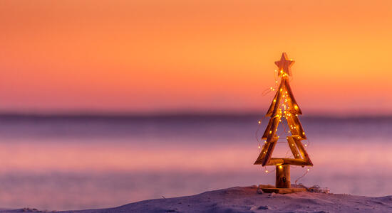 pinetasulmarecampingvillage en offer-for-the-weekend-of-immaculate-conception-in-cesenatico-on-campsite-near-the-christmas-markets 032