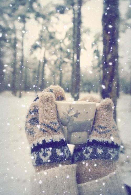 freddo_pelle