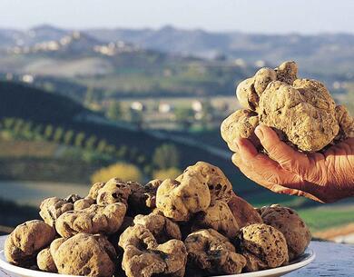 aquahotel en hotel-offer-in-rimini-truffle-fair-in-sant-agata-feltria 008