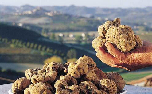 aquahotel en hotel-offer-in-rimini-truffle-fair-in-sant-agata-feltria 003