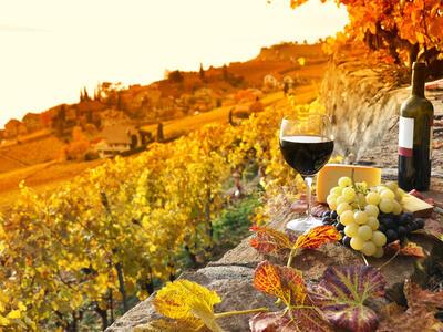 hotelvernel fr un-verre-de-vin-au-coucher-du-soleil-au-milieu-des-vignes 027