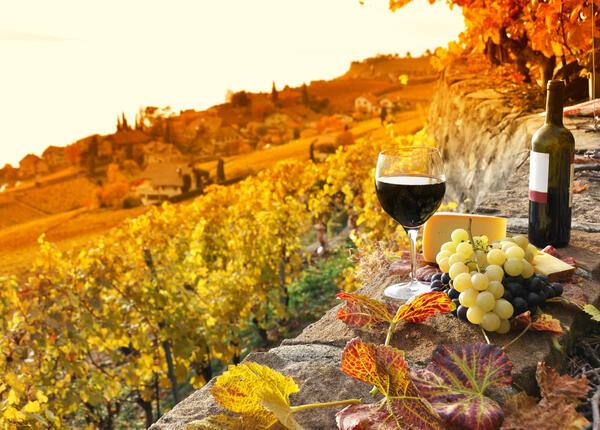 hotelvernel fr un-verre-de-vin-au-coucher-du-soleil-au-milieu-des-vignes 022
