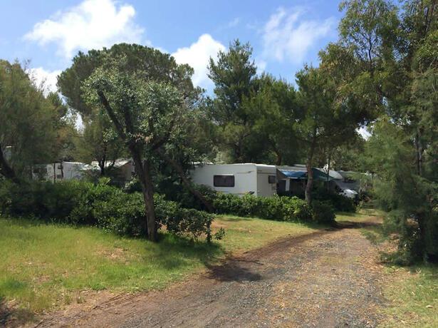 campingtoscanabella it super-offerta-di-fine-luglio-in-piazzola-in-toscana 011