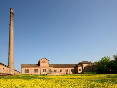 hotelformula it offerta-vacanze-di-giugno-a-rosolina-mare-in-hotel-vicino-alla-spiaggia-e-al-parco-del-delta-del-po 024