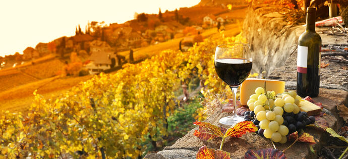 lameridianaperugia en offer-by-hotel-in-perugia-with-winery-tour-and-wine-tasting-in-torgiano 018