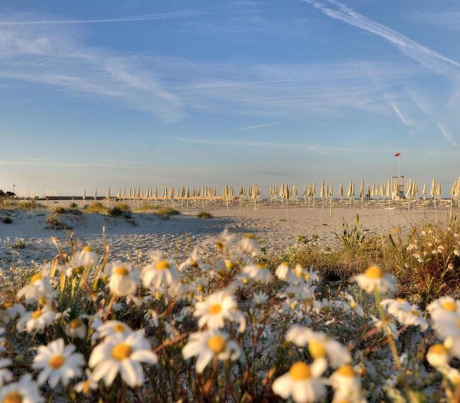 hotelcaladellatorre it idea-regalo-resort-4-stelle-sardegna-con-piscina-e-spiaggia 010