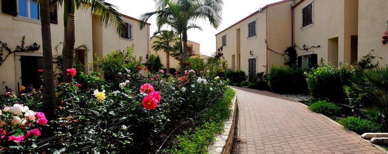 sikaniaresort en offer-summer-village-sicily-by-the-sea 027