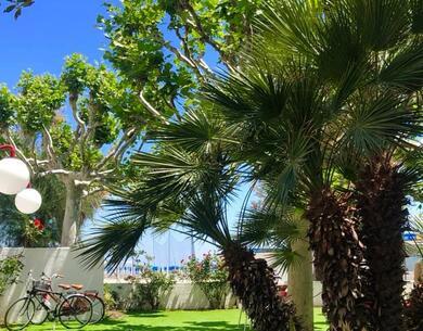 hotelpalmarosa it settembre-in-pensione-completa-in-hotel-sul-mare-in-abruzzo 018