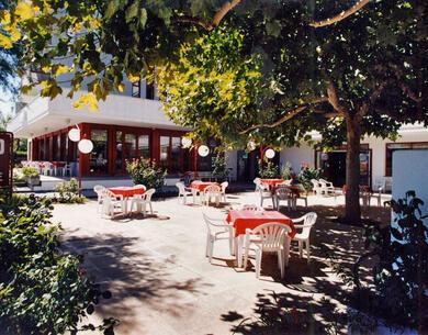 hotelpalmarosa it promozione-agosto-al-mare-a-roseto-degli-abruzzi-in-hotel-con-spiaggia-inclusa-e-camere-spaziose 015