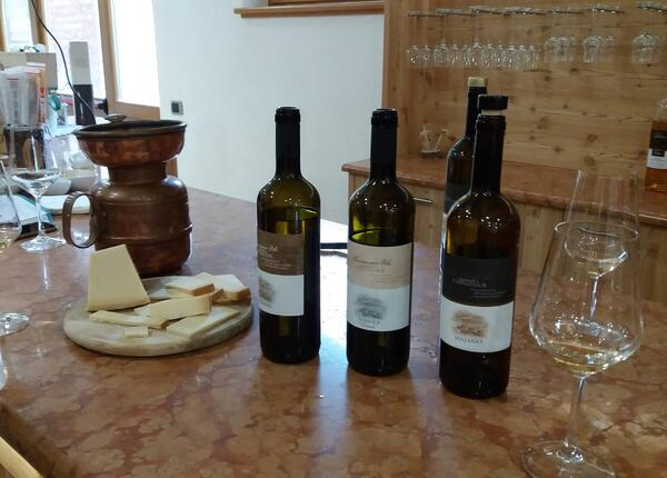 epochehotel.upgarda en special-offer-food-and-wine-weekend-at-lake-garda-in-the-epoche-hotel-zanella 012