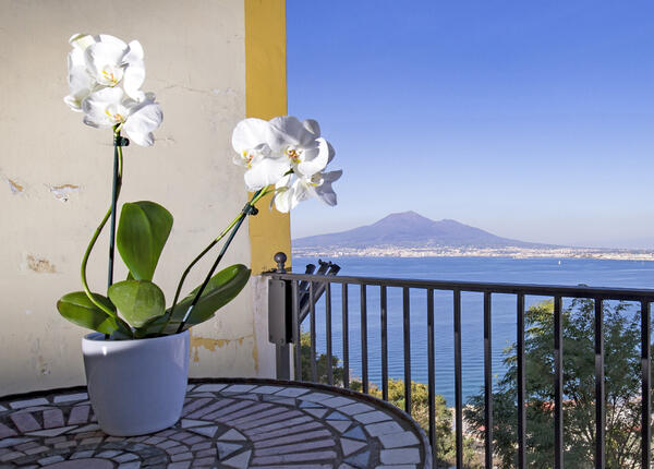 lapanoramicahotel en offer-hotel-for-summer-holidays-in-castellammare-di-stabia-near-capri-italy 019