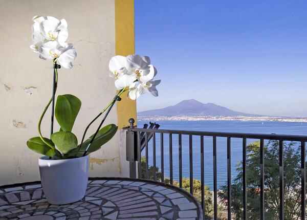 lapanoramicahotel it offerta-hotel-per-vacanze-estate-castellammare-di-stabia-vicino-a-capri 019