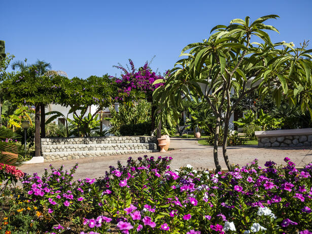 villaggioilgabbiano it offerta-vacanze-estate-villaggio-4-stelle-calabria 014