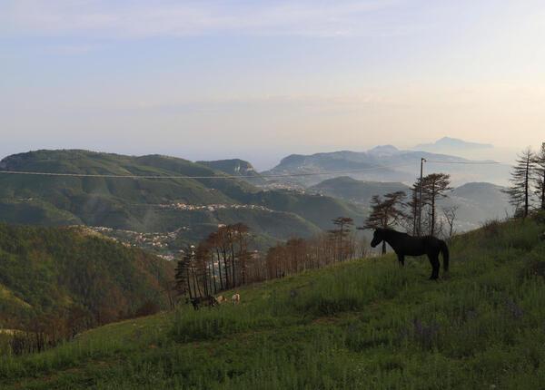stabiahotel en excursion-to-monte-faito 021