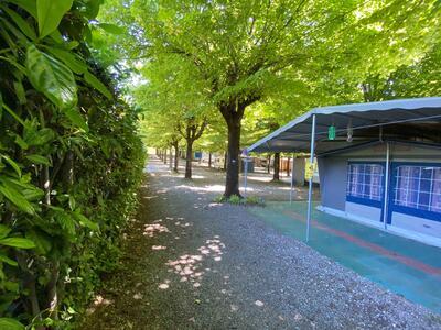 campingrivablu it offerta-vacanze-sul-lago-di-garda-in-camping-village-con-spiaggia 018