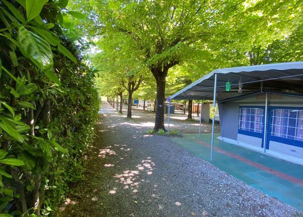 campingrivablu it offerta-vacanze-sul-lago-di-garda-in-camping-village-con-spiaggia 013